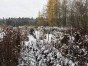 winter201500004