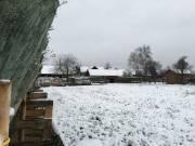 winter201500006