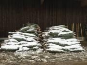 winter201500008